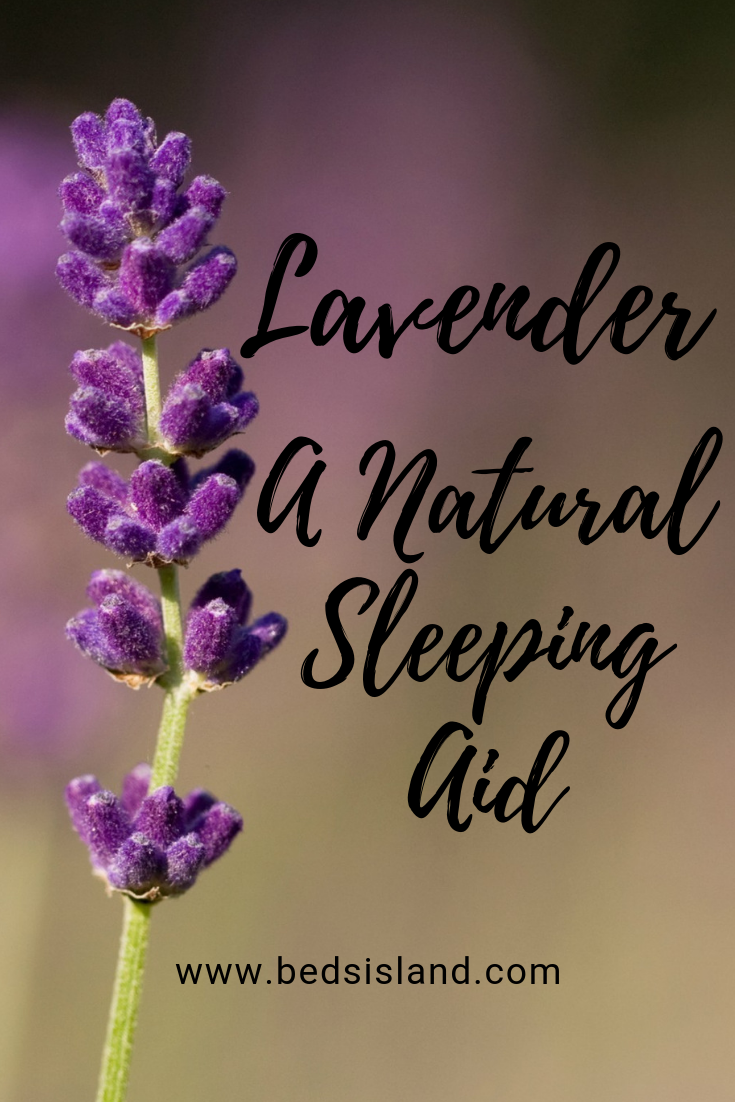 lavender: a natural sleeping aid